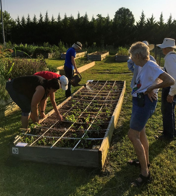Gardeners plant into a square foot bed.
