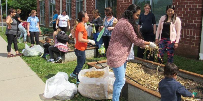 women planing raised garden beds