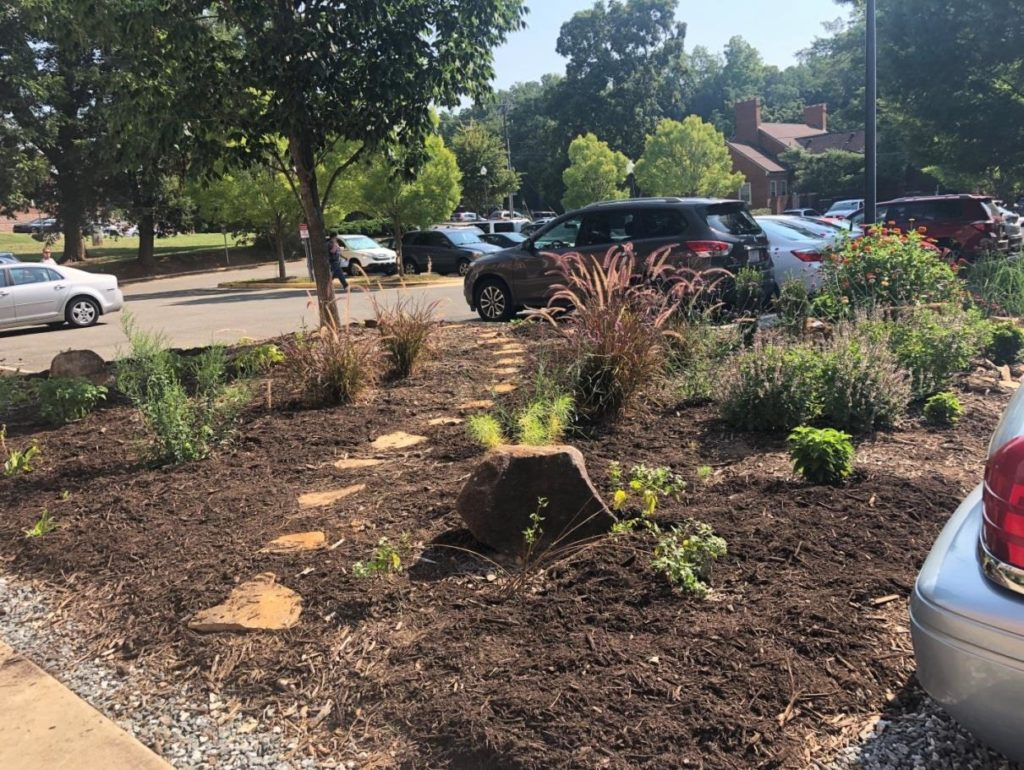 garden bed in parking lot