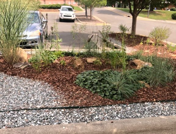 parking lot median bed with gravel path